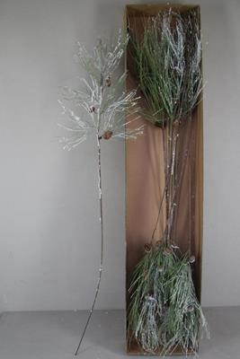 <h4>Stem Pinus+spruce Cones Snow</h4>