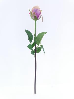 <h4>Af Oxford Rose Bud Lavender</h4>