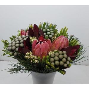 Bqt - 3 Protea/Albiflora Bouquet (P/bunch)