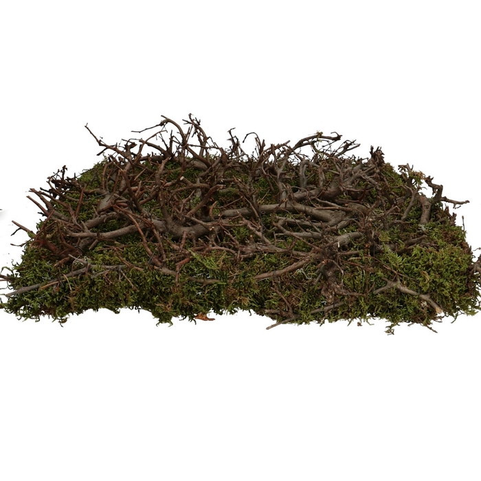 <h4>Dried articles Basic bonsai+moss 40*40cm</h4>