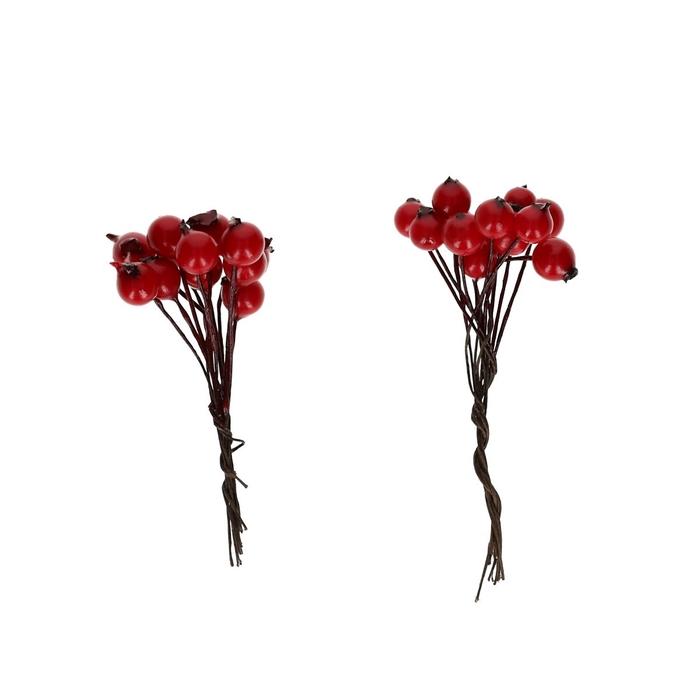 <h4>Autumn Berry/wire d1cm x120</h4>