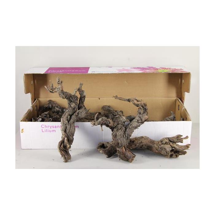 <h4>Grape Wood Natural</h4>