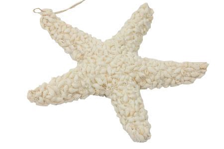 <h4>Hang. Star Elisense Shell D30.0</h4>