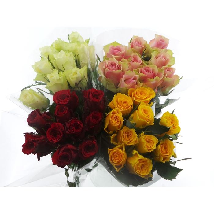 <h4>Bouquet Mono Rozen x10 mix 40cm</h4>