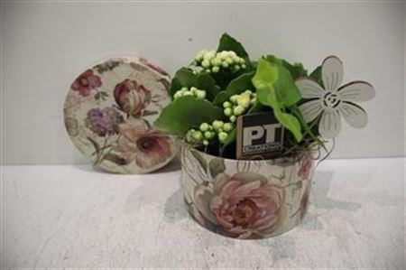<h4>2091 Roses Box Small</h4>