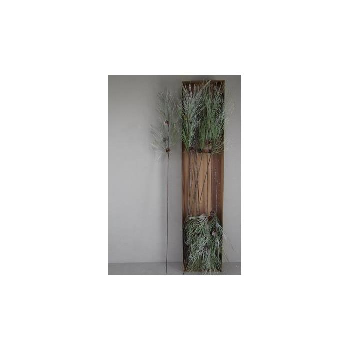<h4>Stem Pinus+pine Cones Snow</h4>