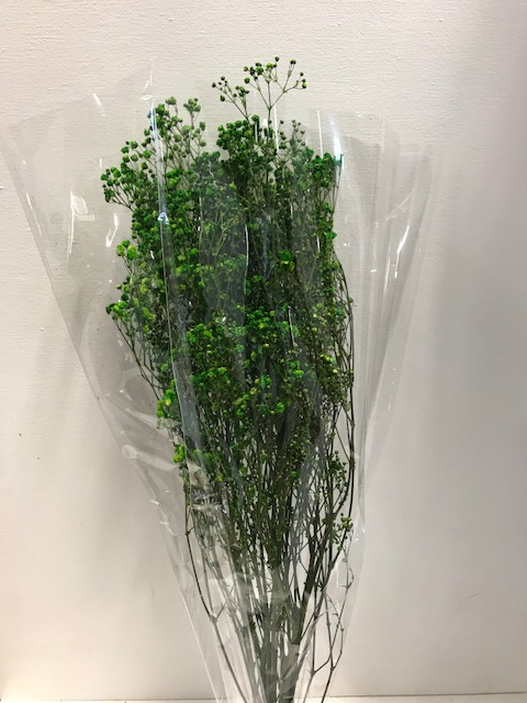 <h4>Gypsophila on stem 60gr groen</h4>