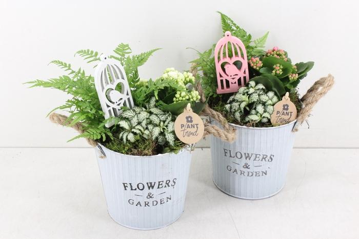 <h4>arr. PL - Zink rond flowers - roze/wit</h4>