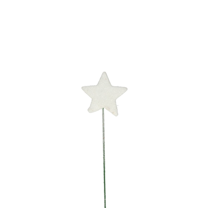 <h4>Christmas Glitter star/wire 40mm</h4>