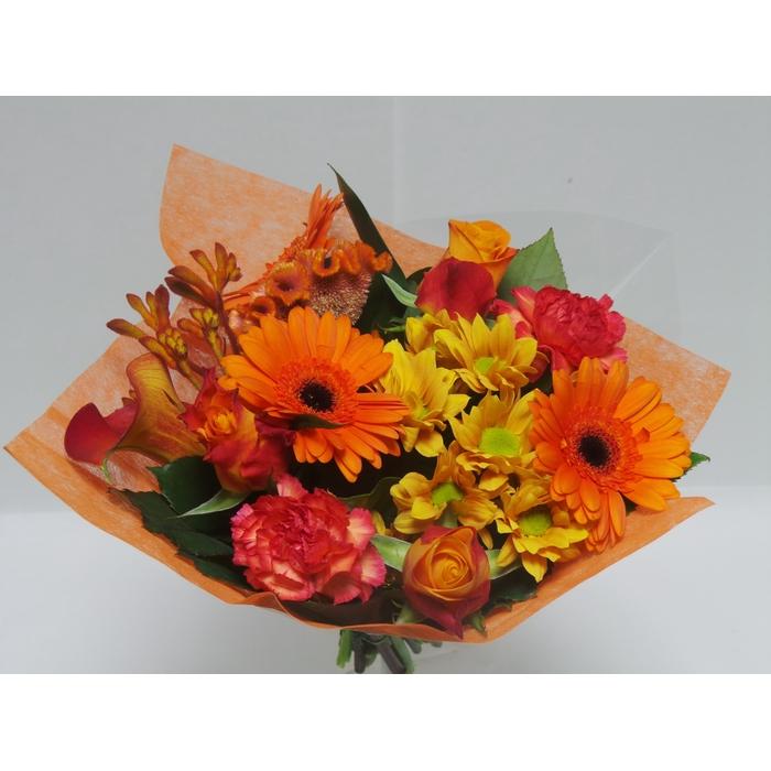<h4>Bouquet Shorties Orange</h4>