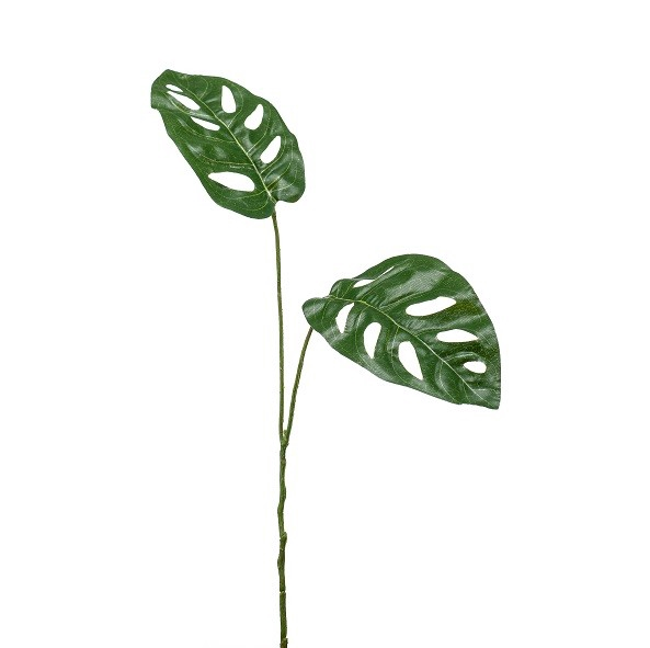 <h4>Silk Monkey leaf 50cm</h4>