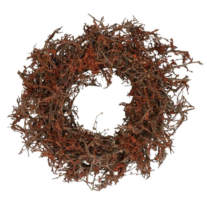 <h4>Krans d30cm Bonsai oranje</h4>