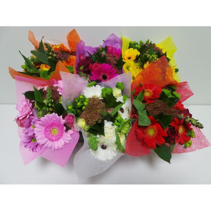 <h4>Bouquet SHORTIES</h4>