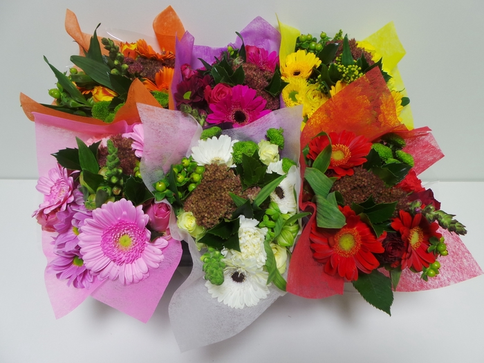 <h4>Bouquet SHORTIES</h4>