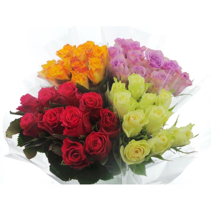 <h4>Bouquet Mono Rozen x10 mix 60cm</h4>
