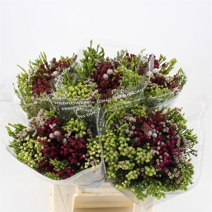 <h4>Bouquet Cape Mix Colour Treated</h4>