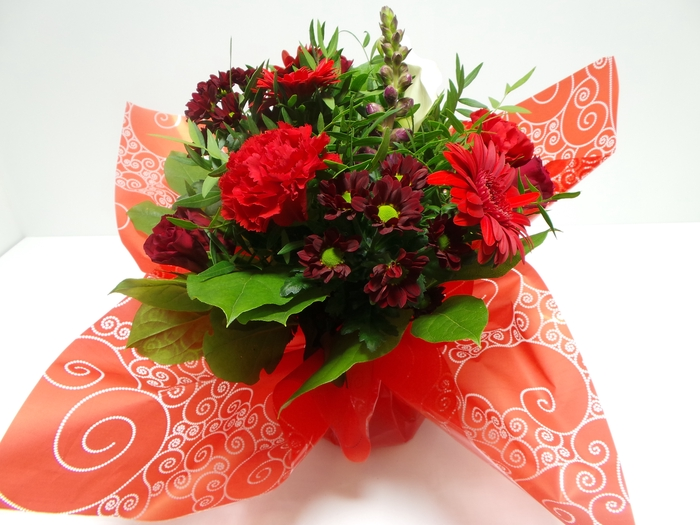 Bouquet Aqua Medium Red