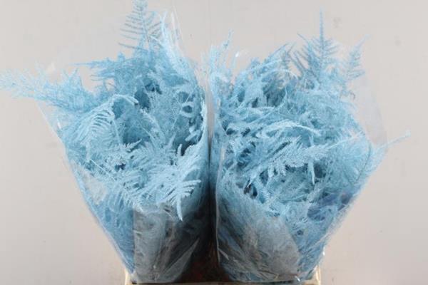 <h4>Asp 1e Veer Baby Blauw</h4>
