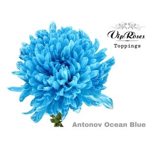 CHR G ANTONOV OCEAN BLUE