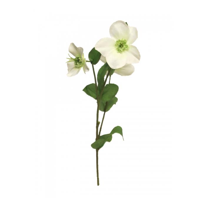 <h4>SILK FLOWERS - HELLEBORUS MONICA WHITE 40CM</h4>