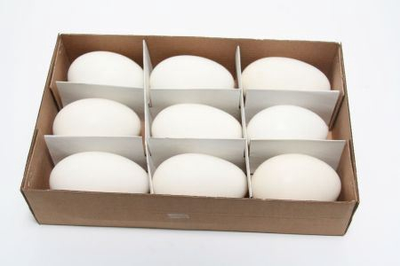 <h4>Basic Egg Goose 9pc</h4>