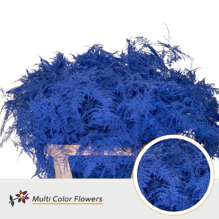 <h4>Asparagus lang Blauw donker</h4>