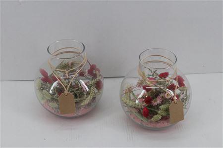 <h4>Arr. Dried Flowers Glass Bol Plus Roze</h4>