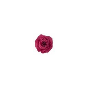 Rose Ines Pink Framboise