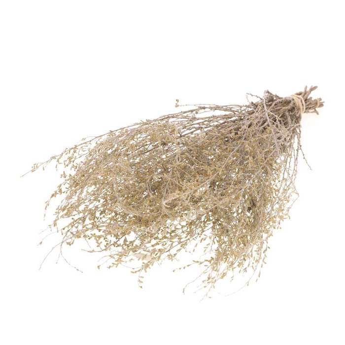 <h4>Artemisia natural</h4>