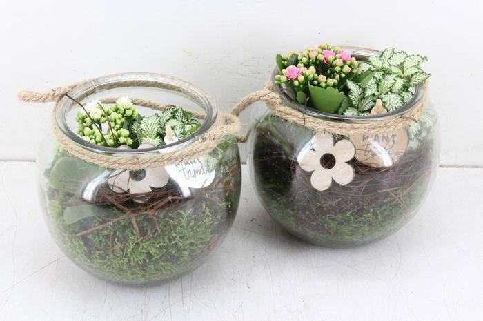 arr. PL - Glas bowl touw - roze/wit