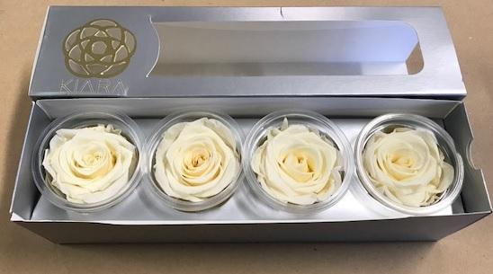 <h4>Rose Pearl White Super(4)</h4>