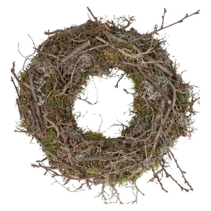 <h4>Wreath d40cm Bonsai+apple wood</h4>