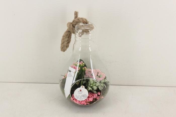 <h4>arr. PL - Lamp XL - roze</h4>