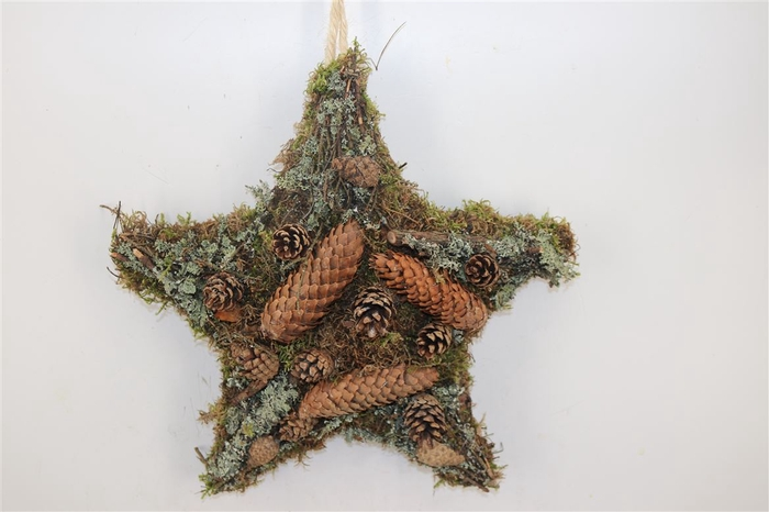 <h4>Moss Star Twig Cones 40x40cm</h4>