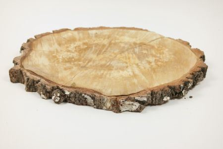 <h4>Basic Birch Slice Rnd D43-47</h4>