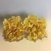 Anjer geel 4,5-5cm