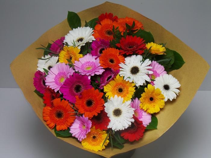 <h4>Bouquet Germini Mixed</h4>