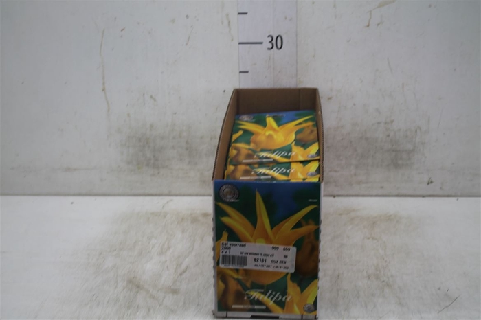 <h4>Bol Tulp Schiedam 10 Zakjes X10</h4>