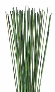 <h4>Mash reed l.green stabi</h4>