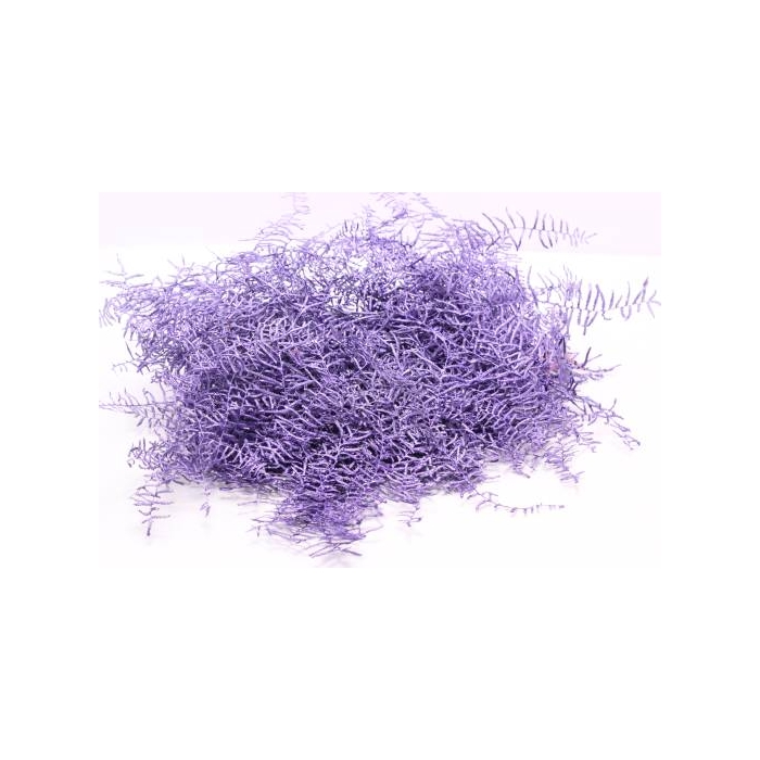 <h4>Coralfern preserved 10st per bunch Metalic Purple</h4>