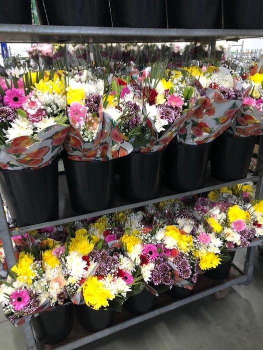 <h4>Bouquet 1 Santos</h4>