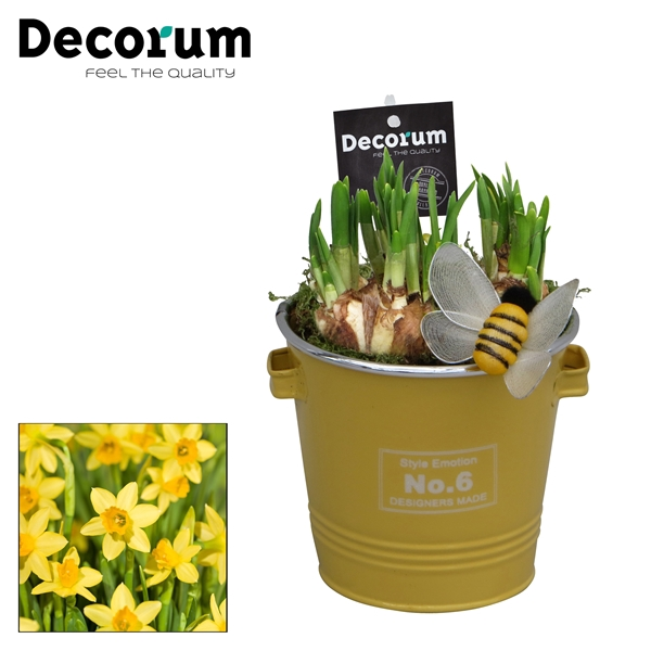 <h4>Narcis Colourful Bucket HL16583N</h4>