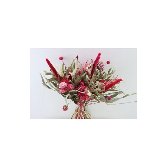 <h4>Dried Bq Myflowers Gomera 2.0 Cerise</h4>