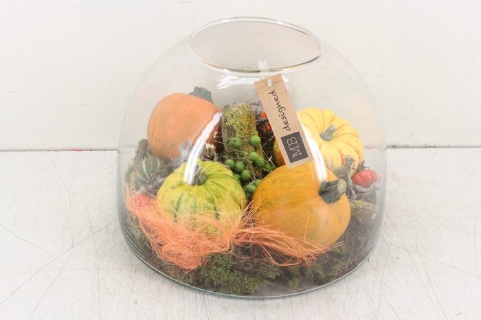 <h4>arr.. Sierfruit MB - Glas Cupola XL orange</h4>