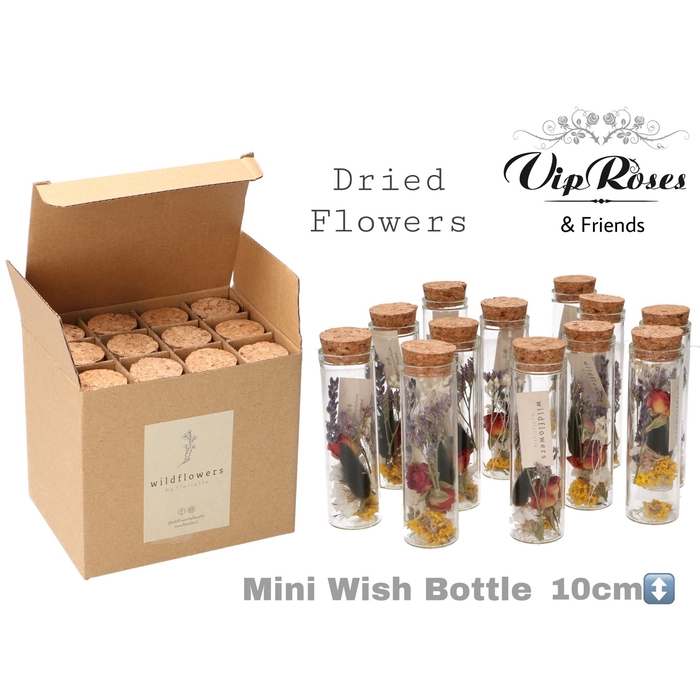 <h4>DRIED MINI WISH BOTTLE</h4>