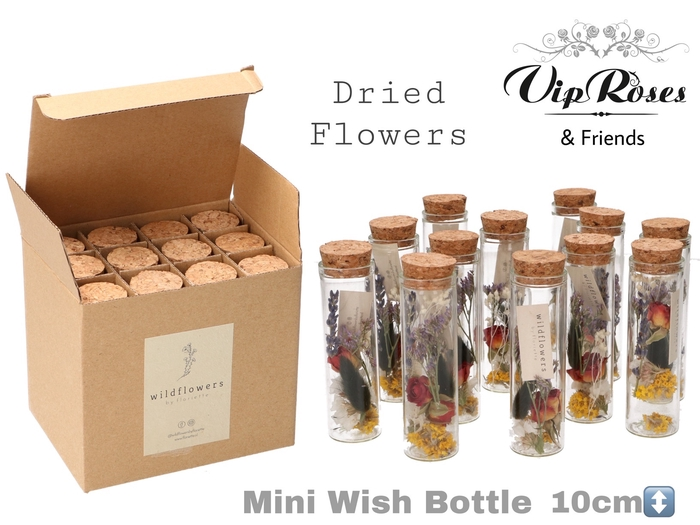 <h4>Vip Dried Mini Wish Bottle</h4>