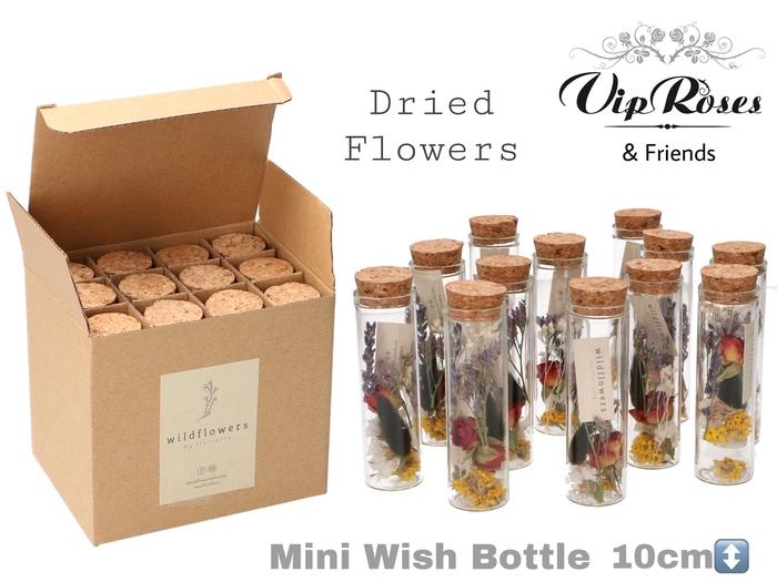 <h4>Vip Dried Mini Wish Bottle</h4>