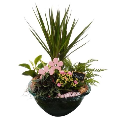 <h4>PTIG8121 Arrangementen planten in schaal</h4>