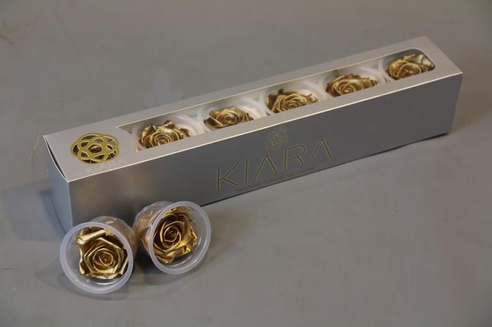 <h4>Rosa Preserved Golden</h4>