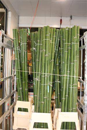 <h4>Bamboe 30/40 2meter</h4>